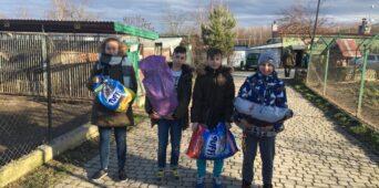 Wspieramy schronisko w Orzechowcach