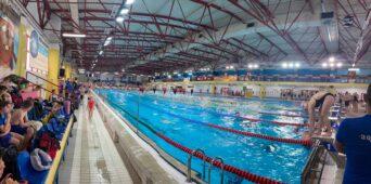Świetny Występ Pływaków